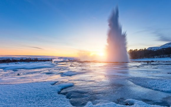 Discovery of Iceland with Whale Watching & Golden Circle Tours