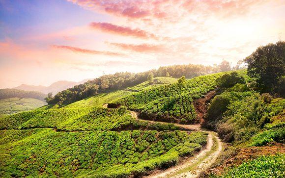 Your Optional Kerala Tour Itinerary