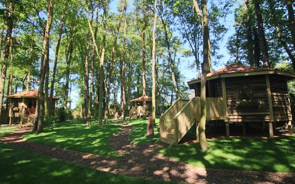 Forest Hideaway at Port Lympne 4*