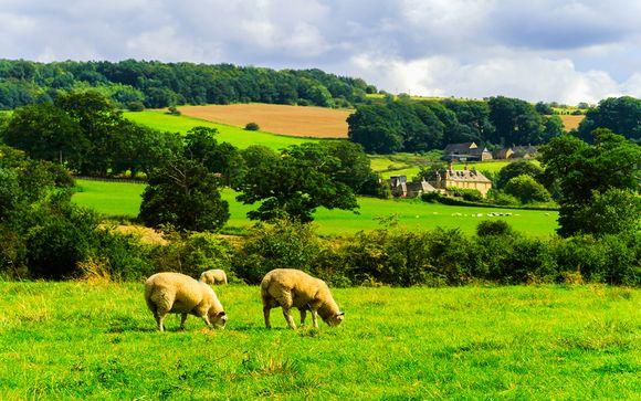 Destination...Wiltshire