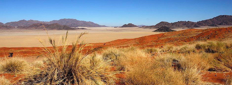 Circuits en Namibie