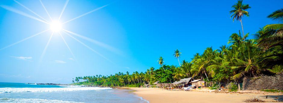 Sri Lanka Travel Guide - Advices, itineraries