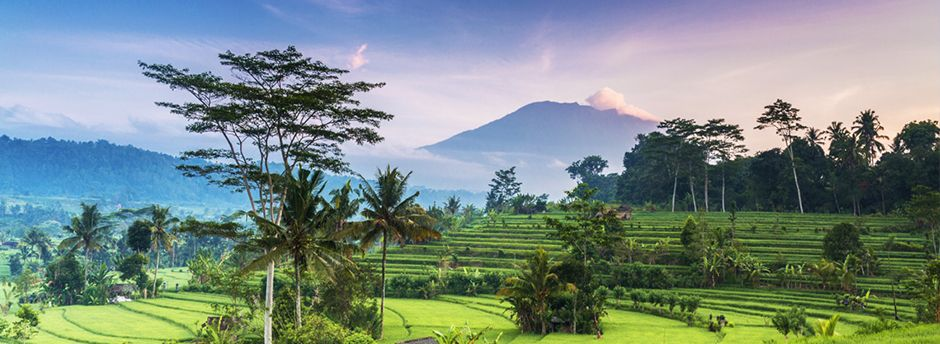 Dream holidays: Bali all-inclusive